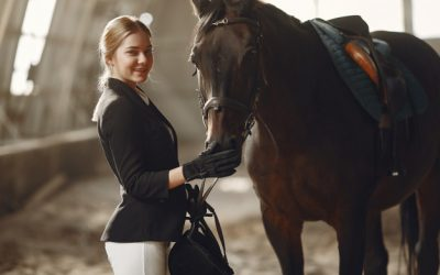 Horse Stable Insurance